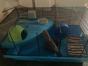 Hamsterkäfig mit Zubehör zu verkaufen