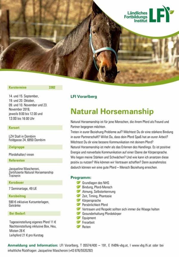 Natural horsemanship Lehrgang
