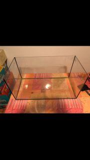 Aquarium für Fische