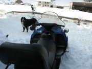 Motorschlitten - Schneemobil - Schneetöff