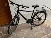 Fahrrad - Pegasus Opero SL