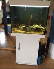 Juwel Lido 200l Aquarium