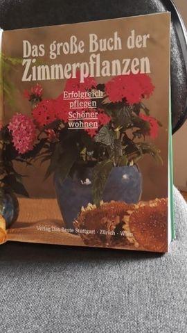 Das große Buch der Zimmerpflanzen: Kleinanzeigen aus Seubersdorf Ittelhofen - Rubrik Fach- und Sachliteratur