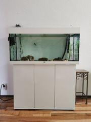 Aquarium 180l inkl Zubehör