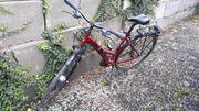 Damenrad Citybike