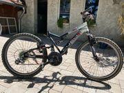 MTB Kindermountain Bike Cyco C24