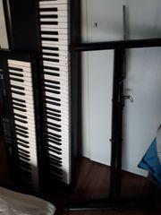 Klavier und Shynteseiser