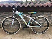 Tolles CUBE Mountainbike Rahmengröße 35cm