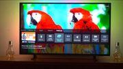 Led TV 4k UHD 50zoll