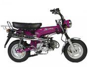 Suche Honda DAX oder Skyteam
