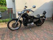 Harley Sportster XL 1200 Custom