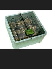 ZooMed Reptibator Egg Incubator NEU