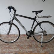 Fahrrad Giant neuwertig