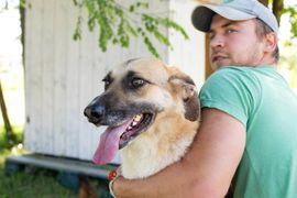 Jumbo - will hoch hinaus: Kleinanzeigen aus Kirchzell - Rubrik Hunde