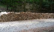 10 5RM Brennholz Selbstabholung