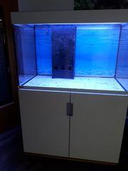 Eheim Incpiria 300 Marine Meerwassee