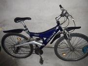 Mountainbike 26