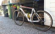 Cannondale synapse 54