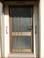 Aluminium Haustür mit Glaseinsatz und