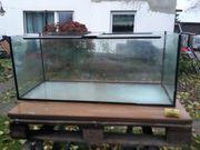 Aquarium für Fische und Schildkröten