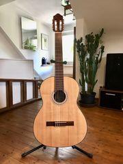 Pro Arte Maestro GC-210 II