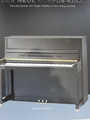 Ritmüller- Klavier aus der pearl