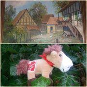 Suche Wohnimmobilie mit Pferdehaltung