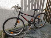 Trex 800 Sport Fahrrad