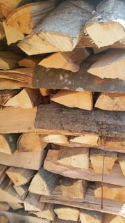 Brennholz Kaminholz Buche Eiche 25cm
