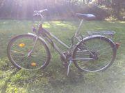 Fahrrad Trekking Damen KTM 28
