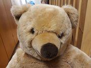 Teddybär sucht neues zu Hause