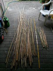 90 Bambusstäbe - Bambusstangen 1 - 4