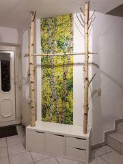 Getrocknetes Birken Holz Birkenstämme Birkenstamm