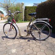 Fahrrad tiefer Einstieg 26 Zoll