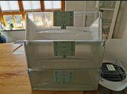 Kühlschrank Einrichtung eines Liebherr CBES4056-20