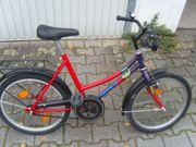 Schönes Mädchenrad 20 Zoll