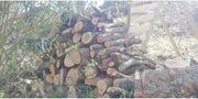 Brennholz stammholz schüttholz