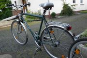Herren Trekkingrad Recker grün 7-Gang