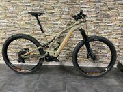 E-Bike MTB Specialized Turbo Levo