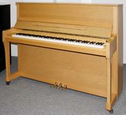 Klavier Weinberg U 19 P