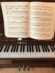Klavierunterricht 20EUR Stunde