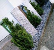 Gartenbau Gartenpflege Grünpflege Heckenschnitt Mäharbeiten