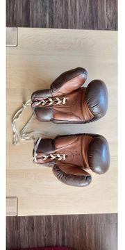 Boxhandschuhe WEHA 12 Unzen