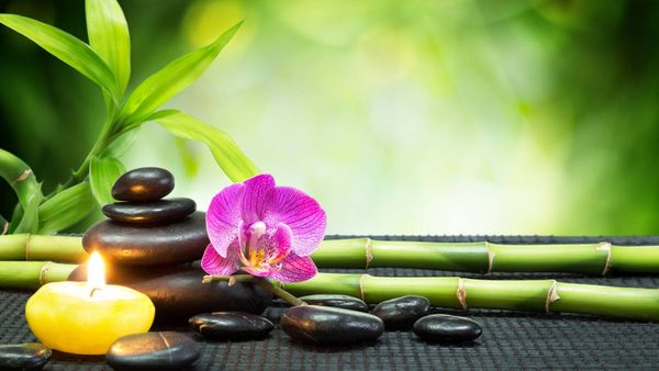 Tantra Massage Erotische Massage