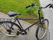 Fahrrad 28 Zoll Herrenrad Citybike