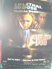 2003 Orginal Plakat A1 Horrorfilm