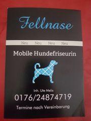 Mobile Hundefriseurin