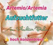 Futter für Artemio Artemia Zucht
