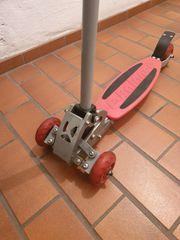 E- Balance Vierradroller