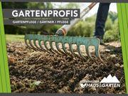 Gartenpflege Grundstückspflege Unkraut Rasen mähen
